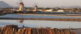 WWF: Ja zur Energiewende