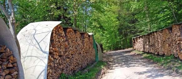 Erzeugerpreise für Rohholz im Februar 2013: – 2,3 % gegenüber Vorjahr