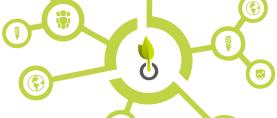Als ökologischer Investor von der Energiewende profitieren – Neue Crowdfunding-Plattform startet erstes Projekt für Biokohle
