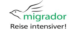 """Interview mit Mike Zieseler von Migrador: """"Wir haben uns bewusst für Crowdfunding entschieden"""""""