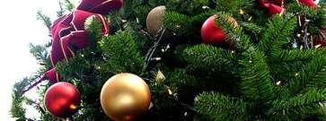 Jeder Deutsche gibt im Schnitt 364 Euro für Weihnachten aus